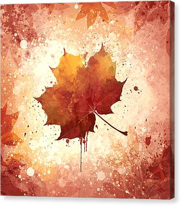 Red Autumn Leaf Canvas Print by Thubakabra