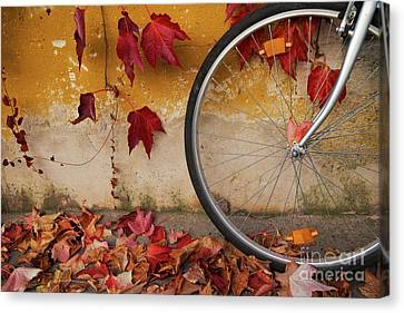 Canvas Print featuring the photograph Red Autumn by Yuri Santin