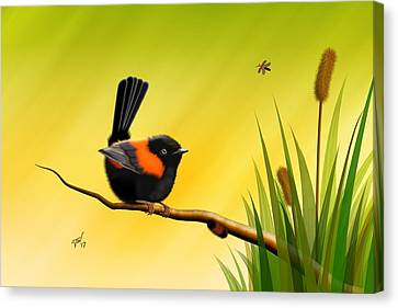 Canvas Print featuring the digital art Red Backed Fairy Wren by John Wills
