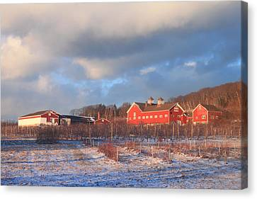 Red Barn And Orchard Winter Evening Canvas Print