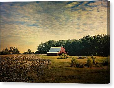 Red Barn At The Cottonfield Canvas Print by Jai Johnson