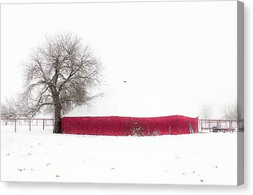 Red Barn In Winter Canvas Print by Tamyra Ayles