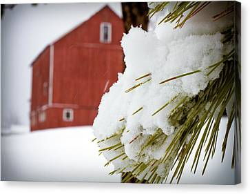 Red Barn Study Iv Canvas Print by Tim Fitzwater