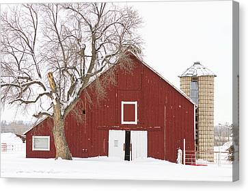 Red Barn Winter Country Landscape Canvas Print by James BO  Insogna