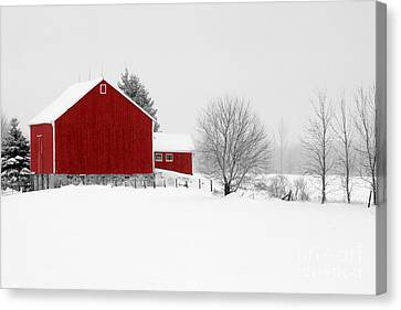 Red Barn Winter Landscape Canvas Print by Cathy  Beharriell