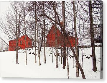 Red Barns Canvas Print by Betsy Zimmerli