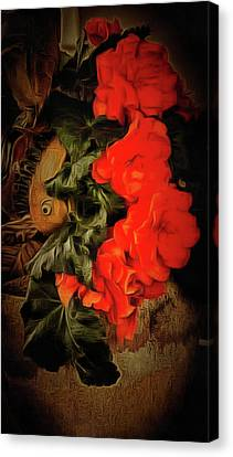 Canvas Print featuring the photograph Red Begonias by Thom Zehrfeld