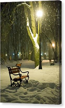 Snowy Night Night Canvas Print - Red Bench In The Park by Jaroslaw Grudzinski