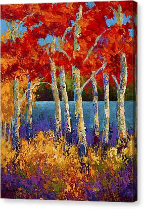 Red Birches Canvas Print by Marion Rose