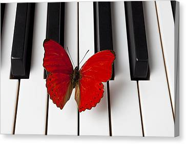 Butterfly Canvas Print - Red Butterfly On Piano Keys by Garry Gay