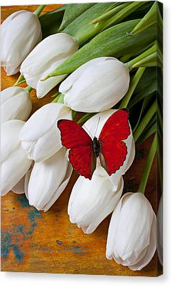 Red Butterfly On White Tulips Canvas Print by Garry Gay
