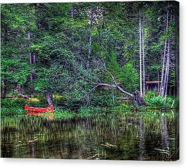 Red Canoe Among The Reeds Canvas Print by David Patterson