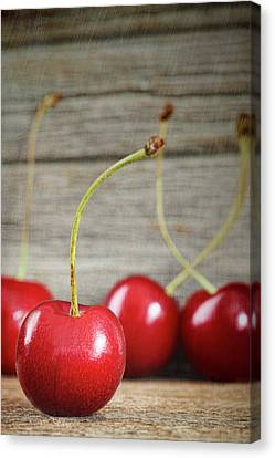 Red Cherries On Barn Wood Canvas Print by Sandra Cunningham