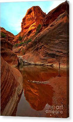Red Cliffs Reflections Canvas Print by Adam Jewell