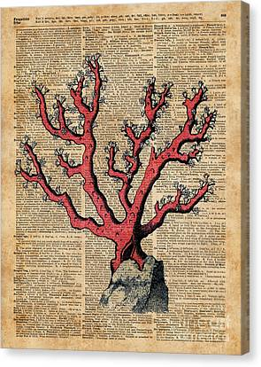 Red Coral Vintage Illustration Dictionary Art Canvas Print by Jacob Kuch