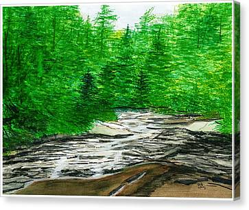 Red Creek Canvas Print