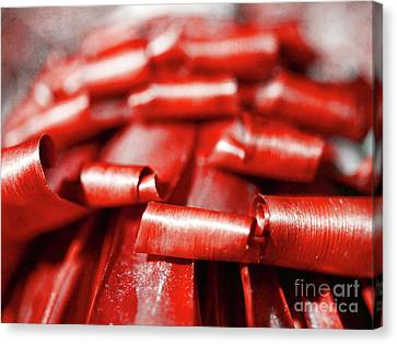 Canvas Print featuring the photograph Red Curls by Stephen Mitchell