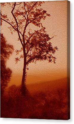 Red Dawn Canvas Print by Linda Sannuti