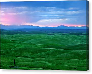 Red Dawn Over The Palouse Canvas Print by Mike  Dawson