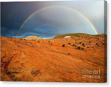 Red Desert Rain Canvas Print by Mike Dawson