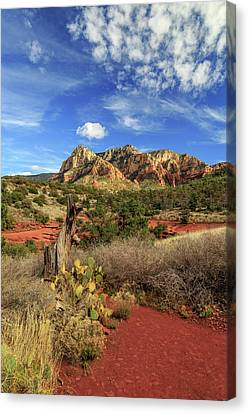 Canvas Print featuring the photograph Red Dirt And Cactus In Sedona by James Eddy