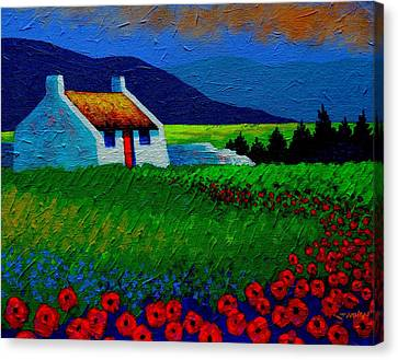 Red Door And Poppies Canvas Print by John  Nolan