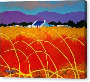 Red Door Canvas Print by John  Nolan