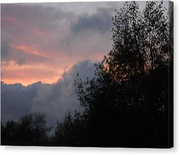 Red Dusk Canvas Print by William Helzer