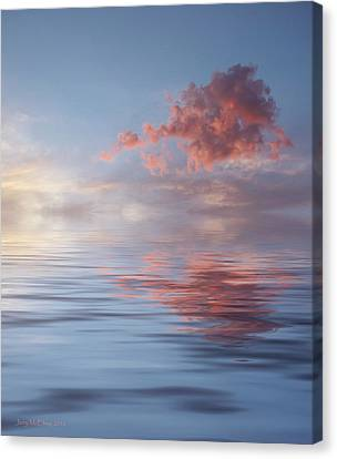 Red Emotion Canvas Print by Jerry McElroy