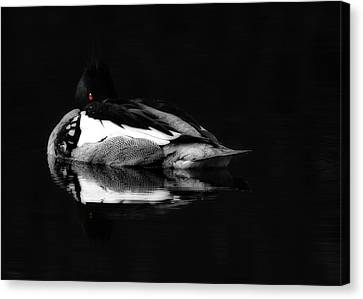 Red Eye Canvas Print by Lori Deiter