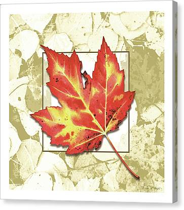 Canvas Print - Red Fall by Jon Q Wright