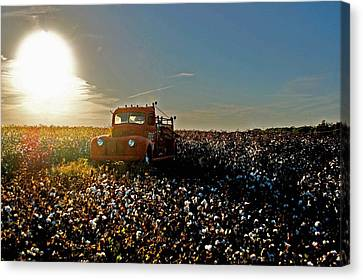Cotton Farm Canvas Print - Red Fire Truck And The Sun by Michael Thomas