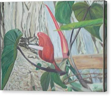 Red Flowering Vine Canvas Print by Hilda and Jose Garrancho