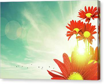 Red Flowers Spring Canvas Print