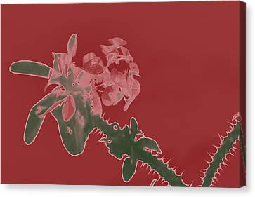 Red Flowers Thorn Digital Canvas Print by Totto Ponce