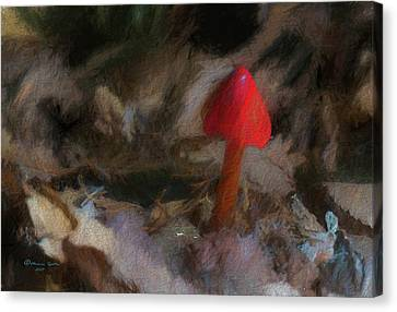 Red Forest Mushroom Canvas Print