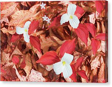 Red Forest White Flowers Canvas Print