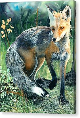 Canvas Print featuring the painting Red Fox- Caught In The Moment by Barbara Jewell