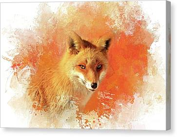 Red Fox Canvas Print by Eva Lechner