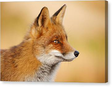 Red Fox Face Canvas Print by Roeselien Raimond