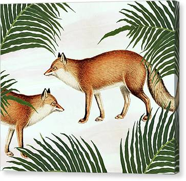 Red Fox Pair Canvas Print