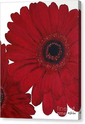 Red Gerber Daisy Canvas Print by Marsha Heiken