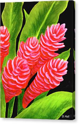 Red Ginger Flowers #235 Canvas Print by Donald k Hall