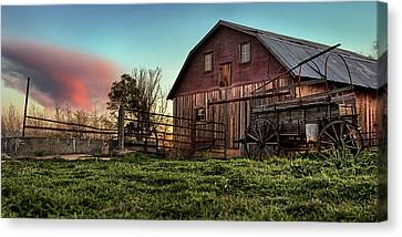 Red Grain Canvas Print by Thomas Zimmerman