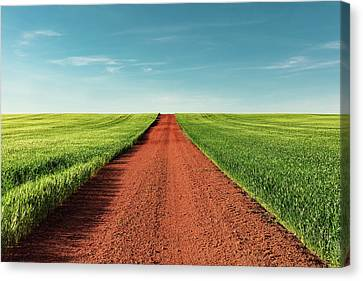 Red Gravel Road Canvas Print