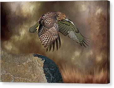 Canvas Print featuring the photograph Red Hawk Down by Donna Kennedy