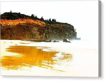 Red Head Beach Canvas Print by Susan Vineyard