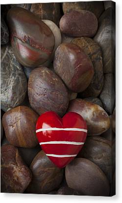 Red Heart Among Stones Canvas Print by Garry Gay