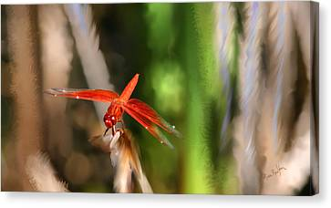 Red Heart Dragonfly Canvas Print