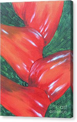 Red Heliconia Stalk Canvas Print by Mary Deal
